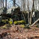 20140311_Blazing_the_Trail